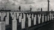 Gdje biste željeli umrijeti – Simboli – Želimir Stanić