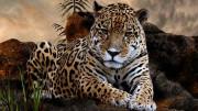 Vizija o Leopardu – Papstvo